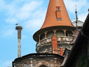 Cesvaine Castle, Latvia (2)